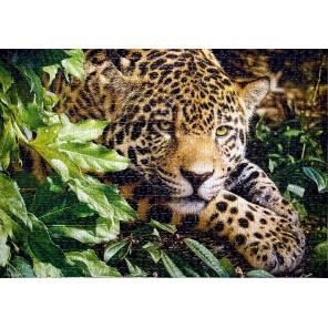 Леопард Пазлы Castorland