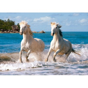 Белые лошади Пазлы Castorland