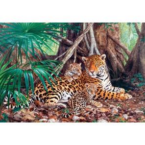 Ягуары в джунглях Пазлы Castorland