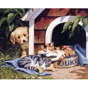 Собака с котятами Набор для частичной вышивки бисером Color Kit