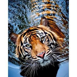 Тигрица Алмазная мозаика (вышивка) Гранни