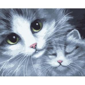 Кошка с котёнком Раскраска картина по номерам акриловыми красками на холсте Color Kit