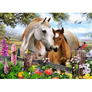 Лошади Пазлы Castorland