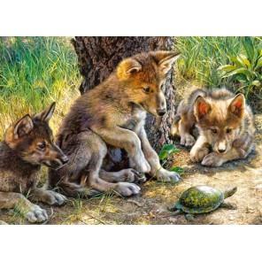 Волчата и черепаха Пазлы Castorland