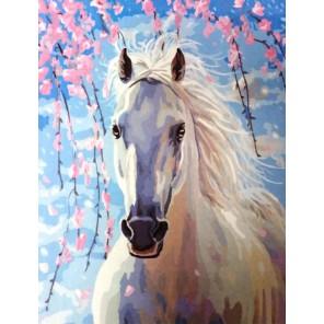 Конь в весеннем саду Раскраска картина по номерам акриловыми красками на холсте