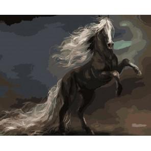Черный конь Раскраска картина по номерам акриловыми красками на холсте