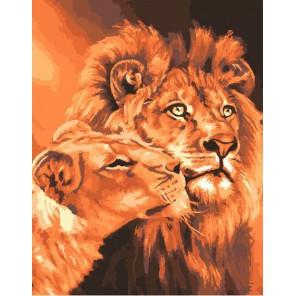 Львиная любовь Раскраска картина по номерам акриловыми красками на холсте