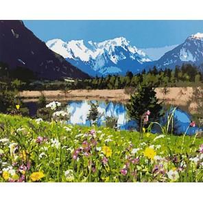Альпы Раскраска картина по номерам акриловыми красками на холсте