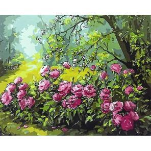 Лесные розы Раскраска картина по номерам акриловыми красками на холсте