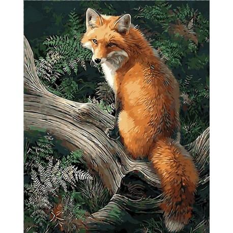 Лиса в лесу Раскраска картина по номерам акриловыми красками на холсте