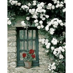 Цветок на окне Раскраска картина по номерам акриловыми красками на холсте