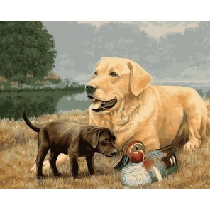 Любопытный щенок Раскраска картина по номерам акриловыми красками на холсте