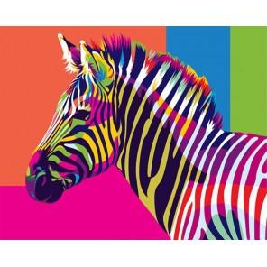 Радужная зебра Раскраска картина по номерам акриловыми красками на холсте