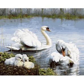 Семья лебедей Раскраска картина по номерам акриловыми красками на холсте