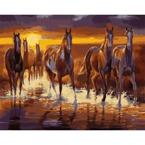Ночной бег Раскраска картина по номерам акриловыми красками на холсте