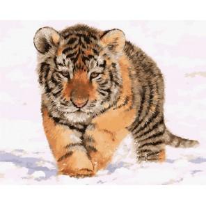 Тигрёнок на снегу Раскраска картина по номерам акриловыми красками на холсте