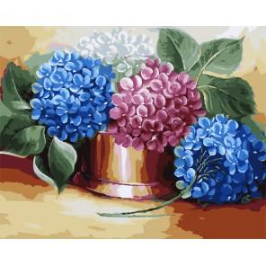 Разноцветный букет гортензии Раскраска картина по номерам акриловыми красками на холсте