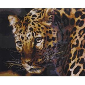 Желтоглазый леопард Раскраска картина по номерам акриловыми красками на холсте