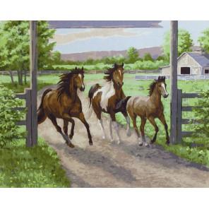Тройка лошадей Раскраска картина по номерам акриловыми красками на холсте