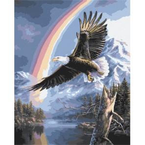 Полет орла Раскраска картина по номерам акриловыми красками на холсте