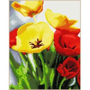 Красные и желтые маки Алмазная мозаика на подрамнике Цветной
