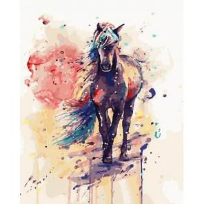 Волшебный конь Раскраска картина по номерам акриловыми красками на холсте