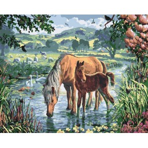 На водопое Раскраска картина по номерам акриловыми красками на холсте