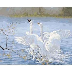Танец лебедей Раскраска картина по номерам акриловыми красками на холсте
