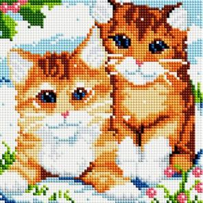 Рыжие котята Алмазная вышивка мозаика на подрамнике Белоснежка