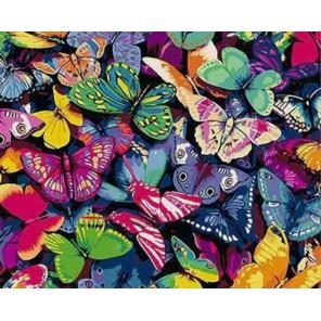 Бабочки Раскраска картина по номерам акриловыми красками на холсте