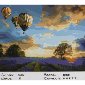 Лавандовое поле и воздушные шары Раскраска картина по номерам акриловыми красками на холсте