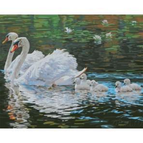 Лебеди с птенцами Раскраска картина по номерам акриловыми красками на холсте