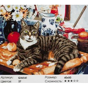 Кухонный кот Раскраска картина по номерам акриловыми красками на холсте