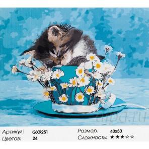 Котенок в шляпке Раскраска картина по номерам акриловыми красками на холсте