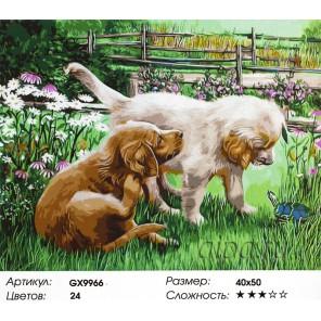 Щенок и черепаха Раскраска картина по номерам акриловыми красками на холсте