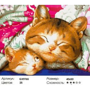 Мама кошка Раскраска картина по номерам акриловыми красками на холсте