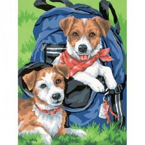 Щенки в рюкзаке Раскраска (картина) по номерам Dimensions