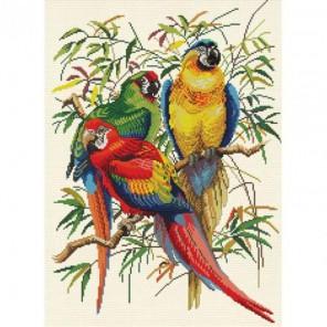 Тропические попугаи Набор для вышивания Белоснежка