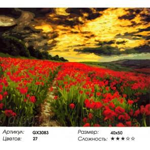 Цветение маков Раскраска картина по номерам на холсте