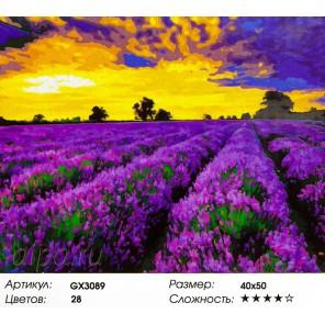 Лавандовый рай Раскраска картина по номерам акриловыми красками на холсте