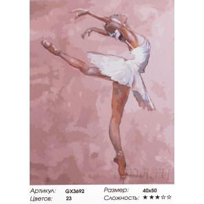 Балерина в розовом цвете Раскраска картина по номерам акриловыми красками на холсте