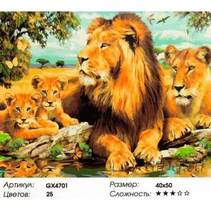 Львиный прайд Раскраска картина по номерам акриловыми красками на холсте