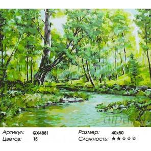 Ручей в лесу Раскраска картина по номерам акриловыми красками на холсте