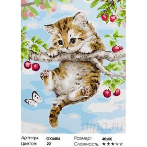 Котенок на вишне Раскраска картина по номерам акриловыми красками на холсте