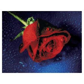 Прекрасная роза Набор для вышивания Белоснежка