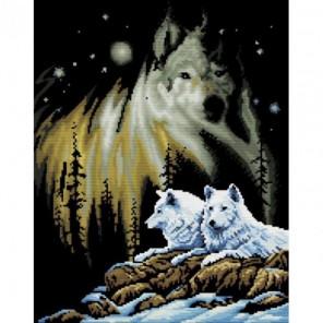 Ночные стражи Набор для вышивания Белоснежка