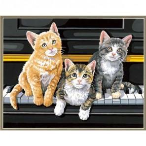 Котята на пианино Раскраска (картина) по номерам акриловыми красками Dimensions