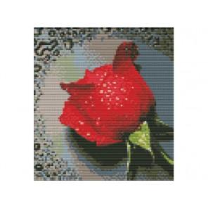 Красный бутон Набор для вышивания Белоснежка