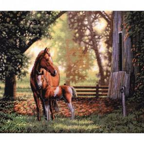Лошадь с жеребёнком 35260 Набор для вышивания Dimensions ( Дименшенс )