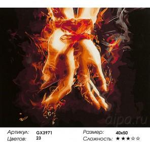 Количество цветов и сложность Освобождение огнем Раскраска картина по номерам акриловыми красками на холсте